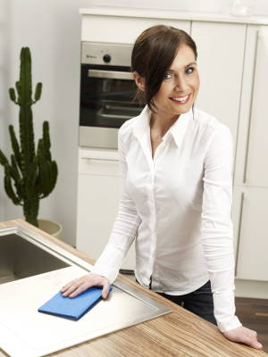 bluewish for your kitchen - smelly towels belong to the past - your sink and table is free from bacteria