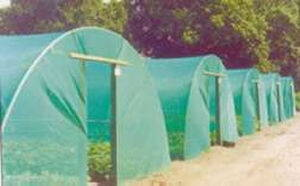 Protect your crop with high density (HDPE) and high tenacity (GRET) polyethylene monofilament yarns bird net