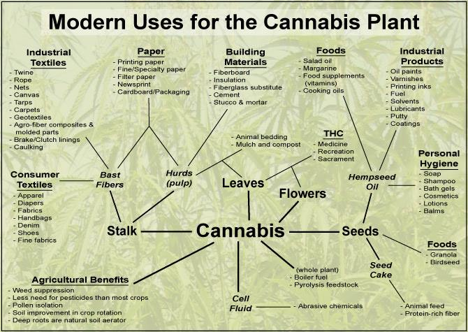 Todays end uses of hemp plants