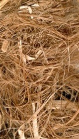 How long does it take hemp fiber to decay?
