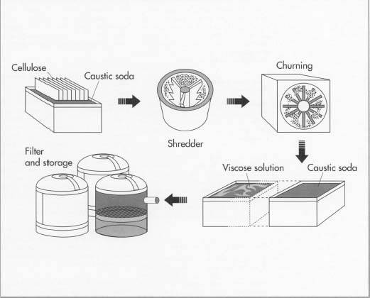 To make rayon, sheets of purified cellulose are steeped in caustic soda, dried, shredded into crumbs, and then aged in metal containers for 2 to 3 days. The temperature and humidity in the metal containers are carefully controlled. After ageing, the crumbs are combined and churned with liquid carbon disulfide, which turns the mix into orange-colored crumbs known as sodium cellulose xanthate. The cellulose xanthate is bathed in caustic soda, resulting in a viscose solution that looks and feels much like honey.